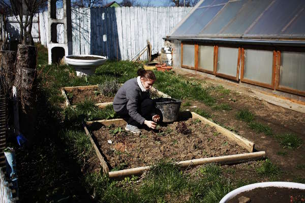 Garden maintenance, Ioana, companion in Popesti - 2017 - Emmaus Iasi Romania