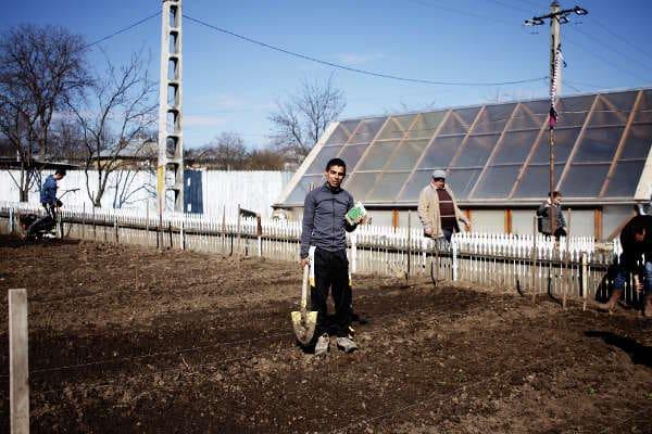 Vasile, companion la Popesti, gata pentru plantații - 2017 - Emmaus Iasi România