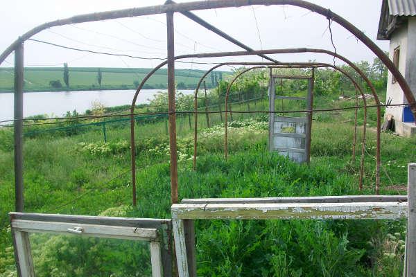 A little bit of greenhouse - 2013 - Emmaus Iasi Romania